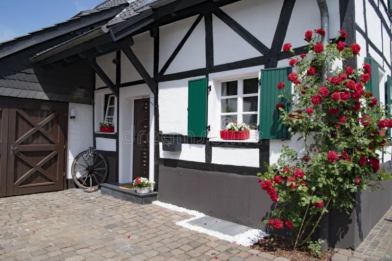 Piccola casa del mezzo legname con la fioritura le rose rampicanti rosse e degli otturatori verdi della finestra fotografia stock