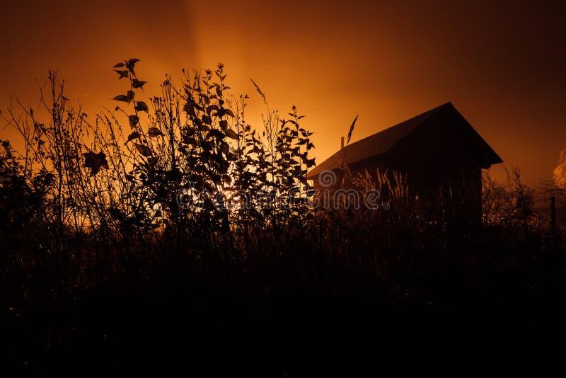 Piccola casa misteriosa nella foresta nebbiosa di autunno immagine stock