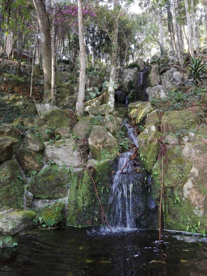 piccola cascata al tempio di ji di Kinkaku immagini stock libere da diritti