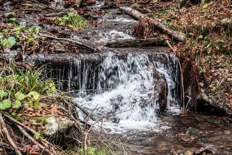 Piccola cascata delle rapide sulla torrente montano durante l'autunno fotografie stock