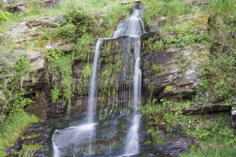 Piccola cascata fra vegetazione fotografie stock libere da diritti