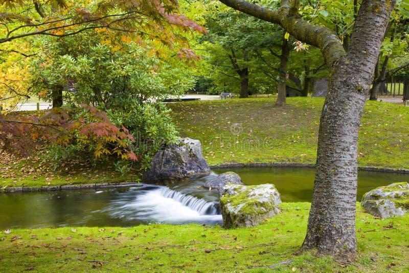 Piccola cascata in giardino giapponese immagine stock for Cascata giardino