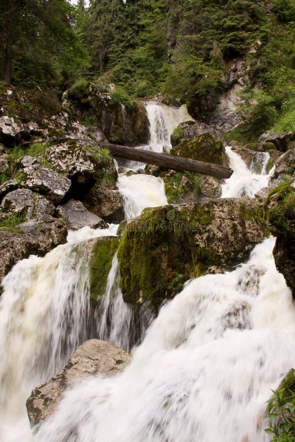 Piccola cascata nel letto di fiume 06 immagine stock