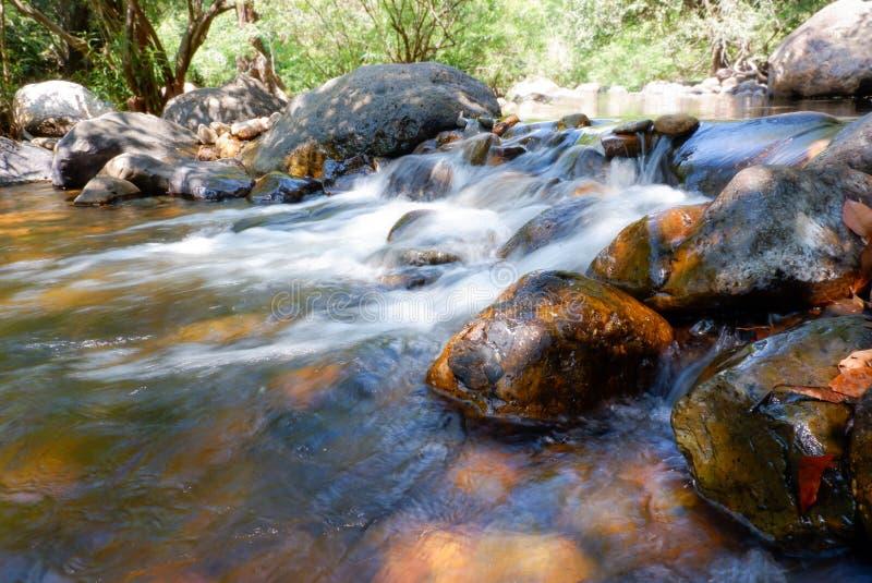 Piccola cascata nella foresta immagine stock