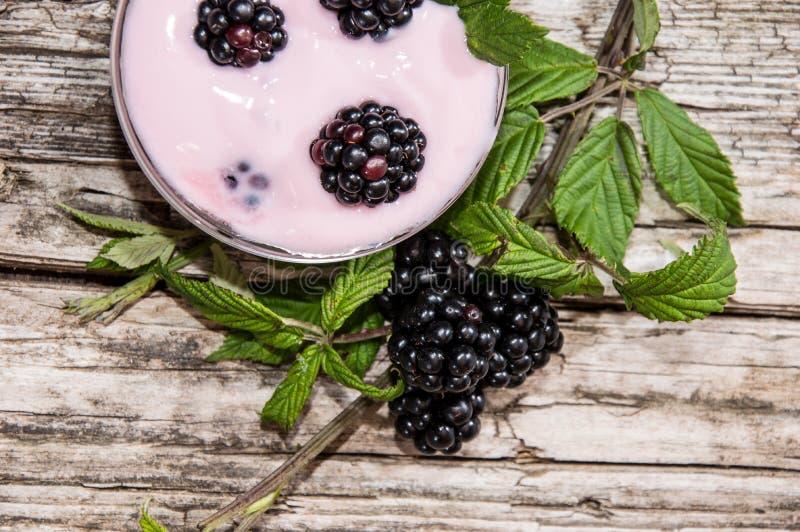 Piccola ciotola con il yogurt di Blackberry immagine stock