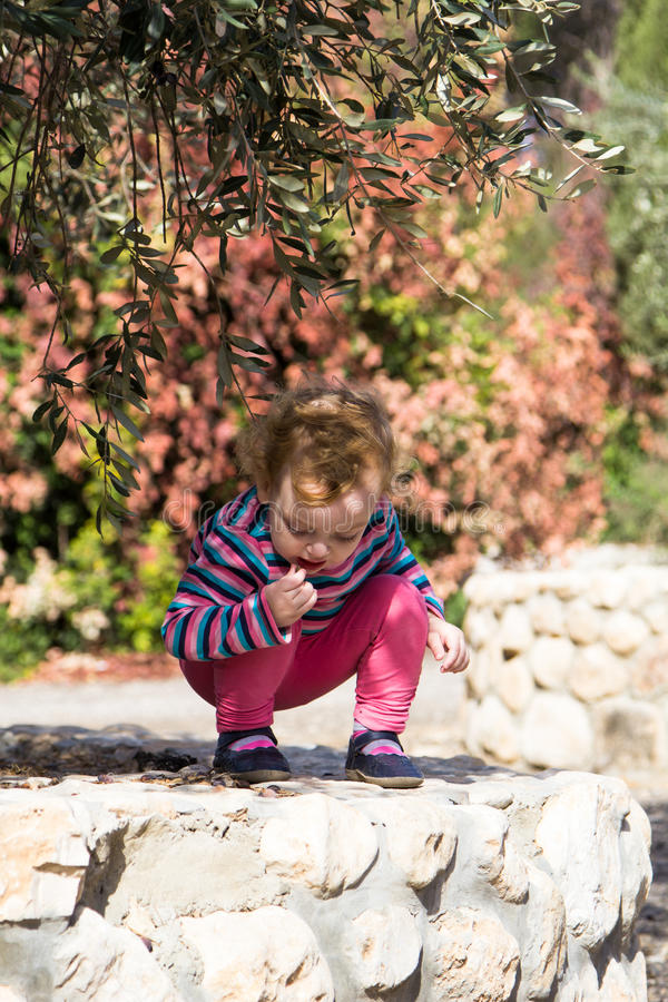 Piccola neonata sveglia che si siede sotto di olivo fotografia stock