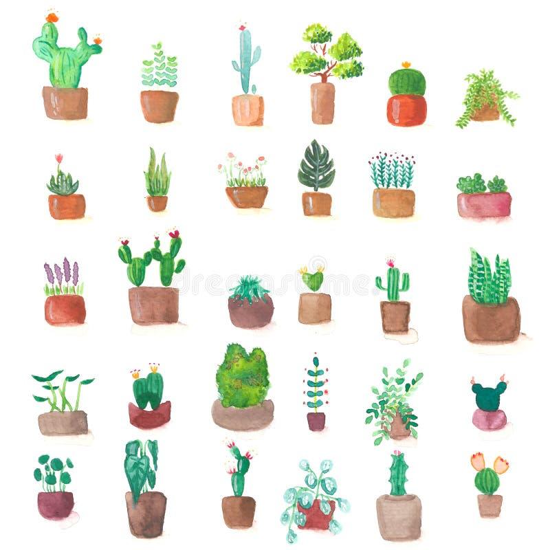 Piccola pittura verde sveglia dell'acquerello dell'insieme del vaso della pianta del cactus illustrazione vettoriale