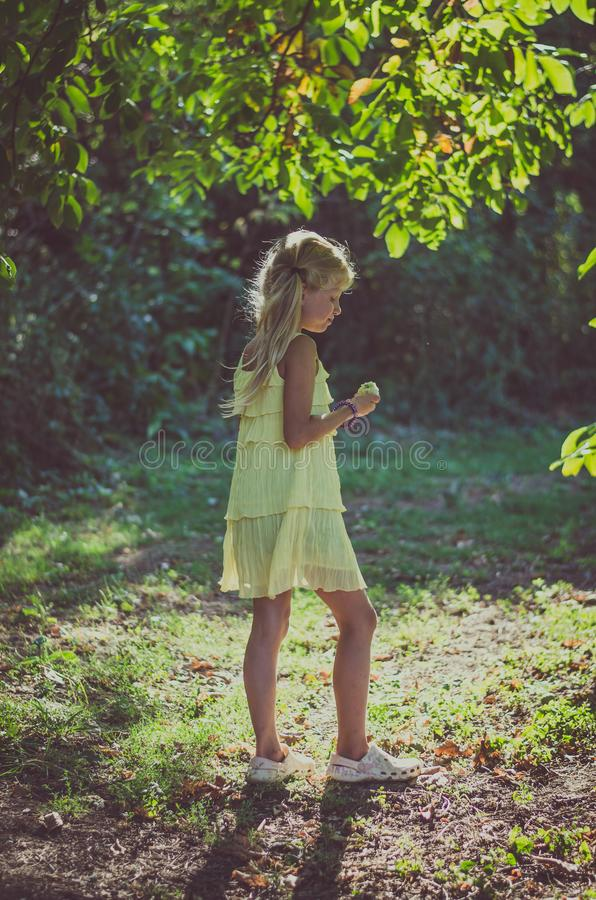 Piccola ragazza adorabile in vestito giallo che sta sotto l'albero fotografia stock libera da diritti