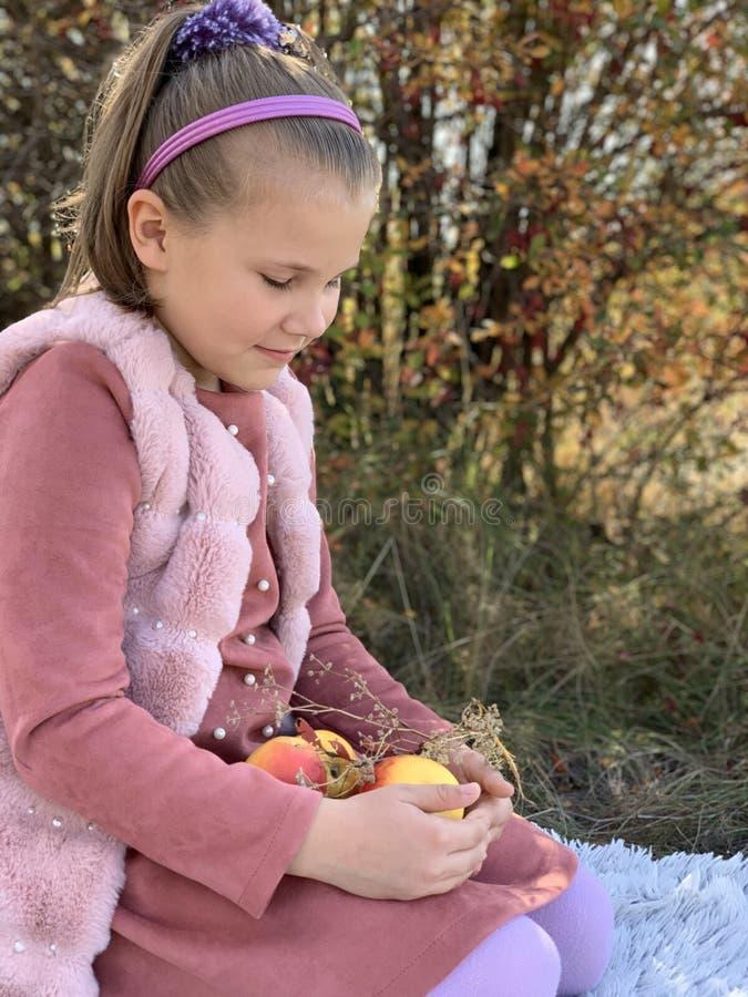 Piccola ragazza al picnic, mele in mano a un bambino fotografie stock libere da diritti