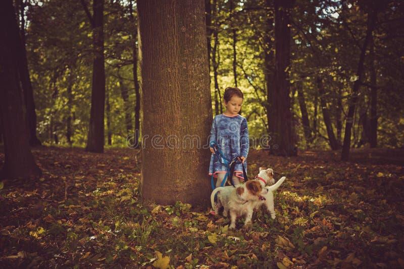 Piccola ragazza caucasica che va in giro il parco di autunno con i cani fotografia stock