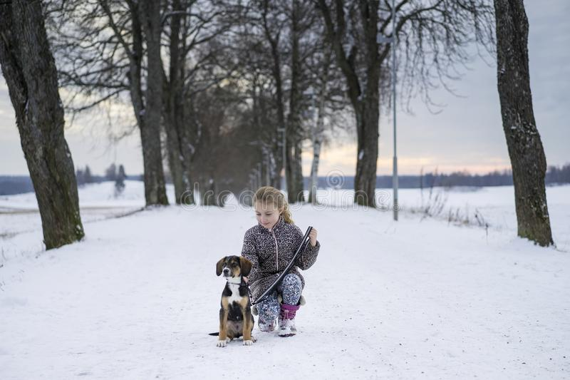 Piccola ragazza svedese caucasica bionda che si siede con il cane alla strada in vicolo di inverno immagine stock libera da diritti