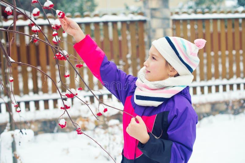 Piccola ragazza sveglia che prova a assaggiare le bacche rosse sotto neve sull'albero immagini stock libere da diritti