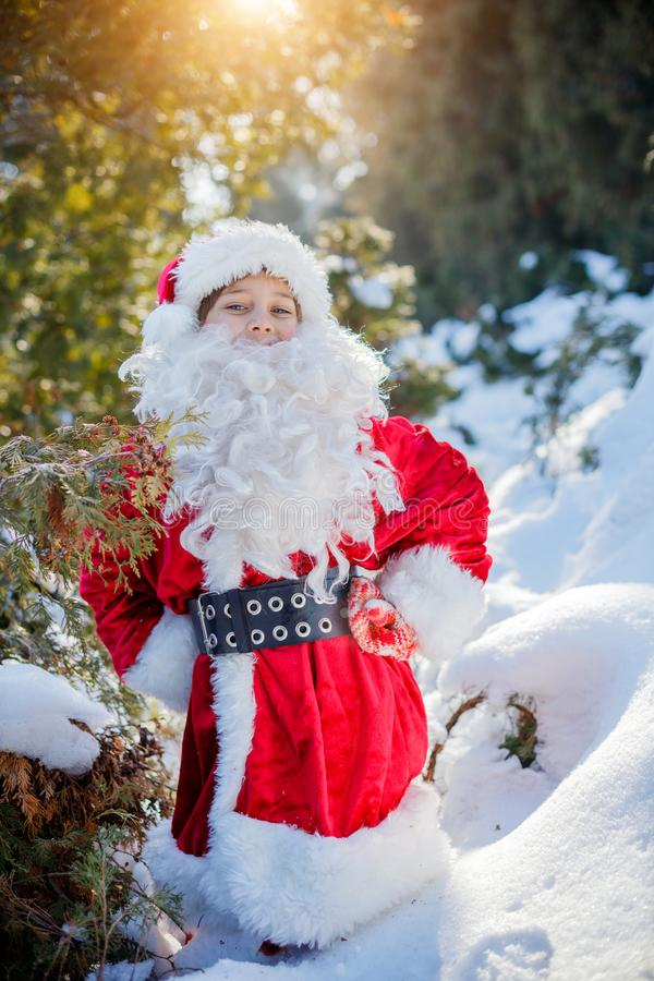 Piccola Santa che cammina in una foresta di inverno fotografia stock libera da diritti