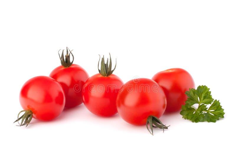 Piccola spezia del prezzemolo e del pomodoro ciliegia fotografia stock libera da diritti
