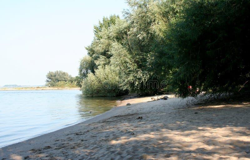 Piccola spiaggia in fiume Waal immagini stock libere da diritti