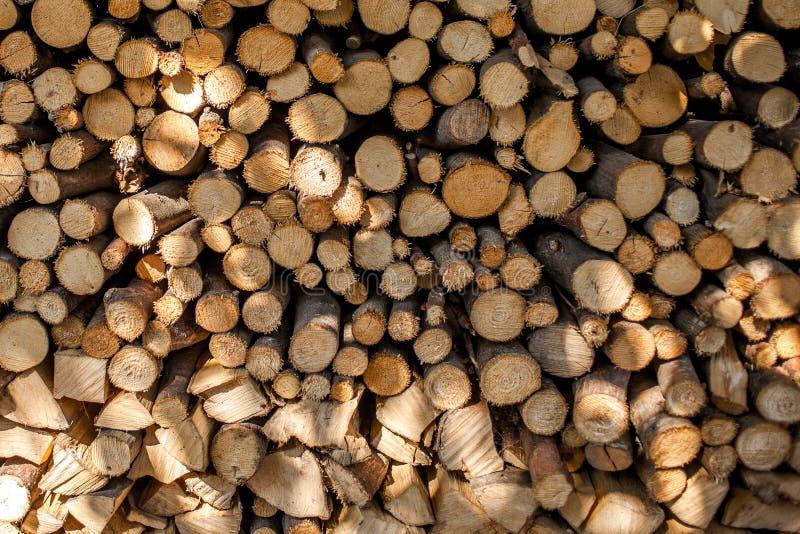 Piccola struttura segata del fondo dei ceppi di albero di Brown immagine stock