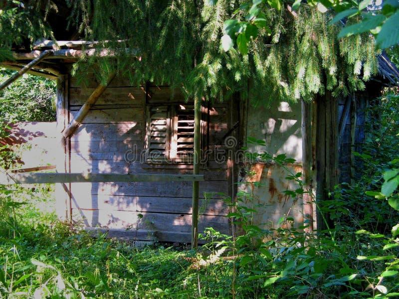 Piccola vecchia capanna di legno abbandonata immagini stock libere da diritti