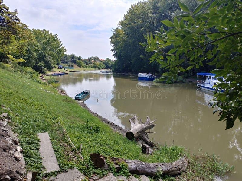 Piccole barche in un fiume del Tamis, Pancevo, Serbia fotografia stock libera da diritti