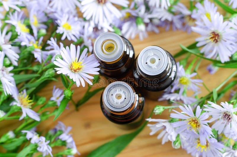 Piccole bottiglie dell'olio essenziale dell'aroma (estratto, tintura, infusione di erbe) Chiuda su, vista superiore, spazio della immagine stock libera da diritti