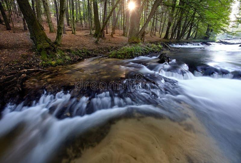 Piccole cascate di mattina fotografie stock libere da diritti