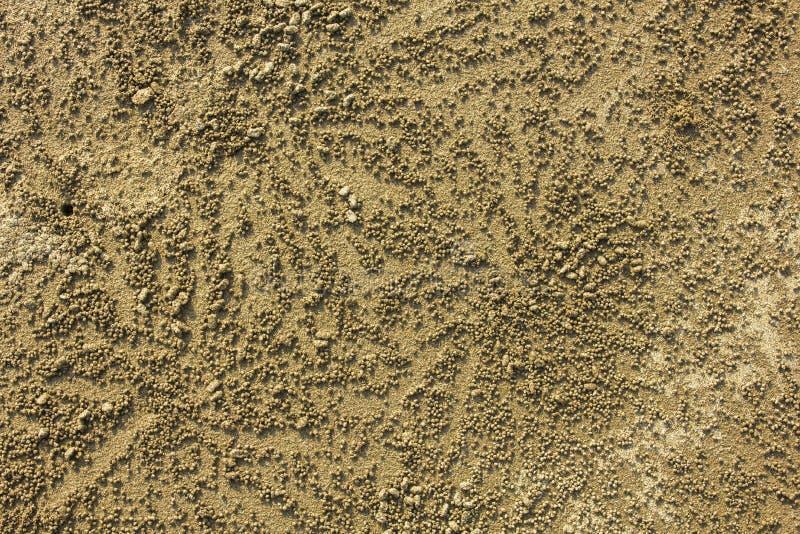 Piccole palle rotonde della sabbia con le ombre vicino ad un foro dei granchi nella vista superiore della sabbia struttura di sup fotografie stock