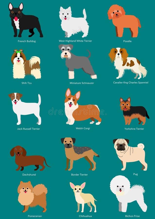 Piccole razze del cane messe royalty illustrazione gratis