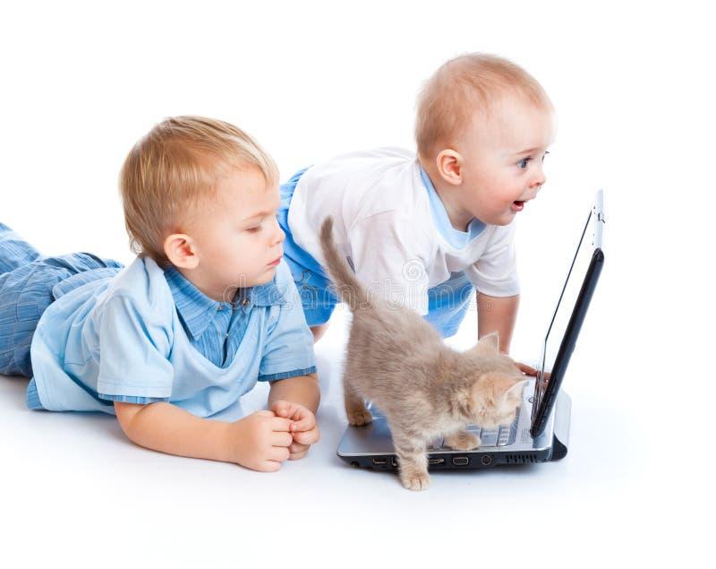 Piccoli bambini, gattino e computer portatile fotografia stock libera da diritti