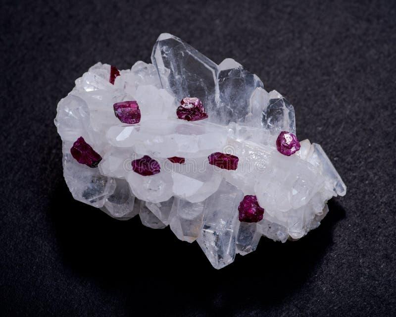 Piccoli cristalli VERMIGLI ruvidi del grado superiore di A dalla Tanzania sul MAZZO del QUARZO di FADEN Isolato sul nero fotografia stock