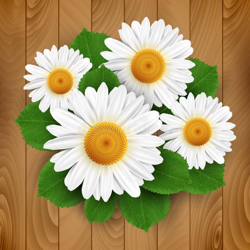 Piccoli fiori bianchi illustrazione di stock