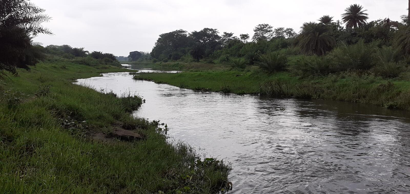 Piccoli fiume e foresta indiani fotografia stock libera da diritti