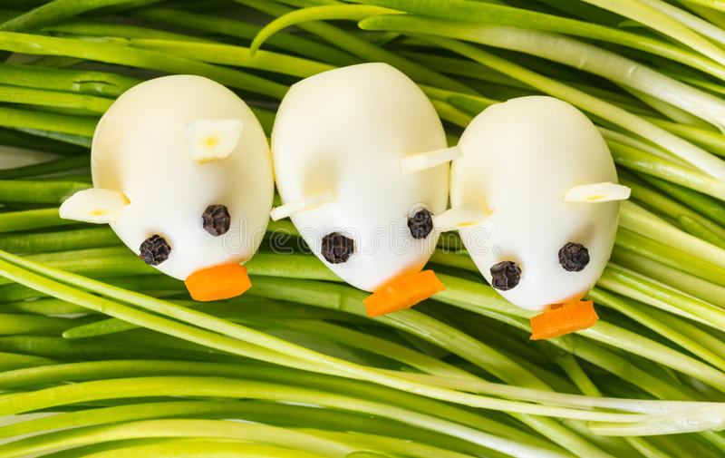 Piccoli maiali delle uova di quaglia immagini stock