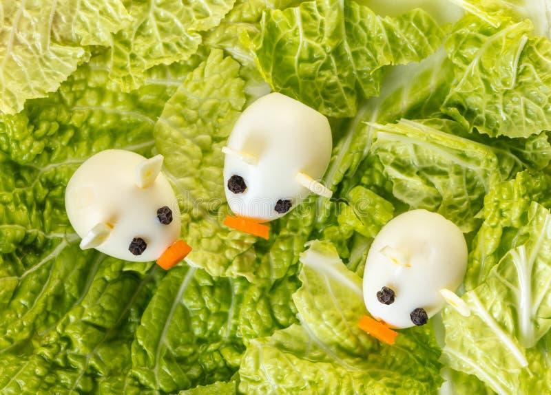 Piccoli maiali delle uova di quaglia con lattuga fotografia stock