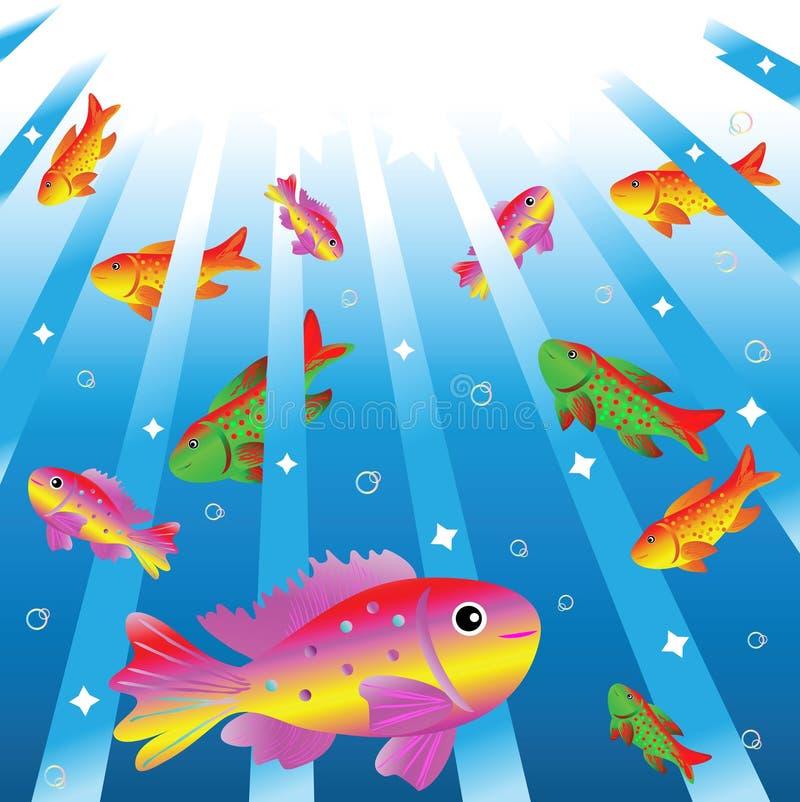 Piccoli pesci eterogenei in acqua. fotografia stock libera da diritti