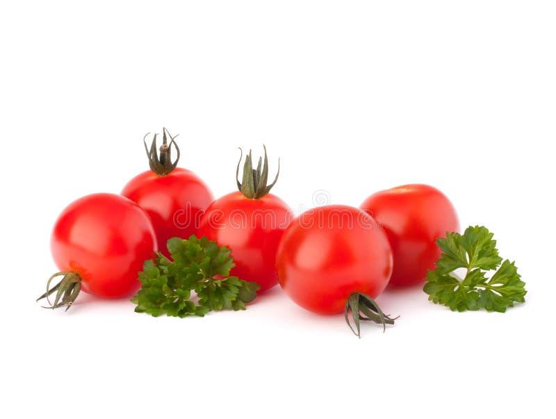Piccoli pomodoro di ciliegia e spezia del prezzemolo immagine stock