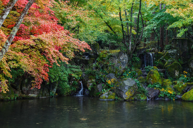 Piccolo al tempio di Daigoji a Kyoto fotografie stock libere da diritti