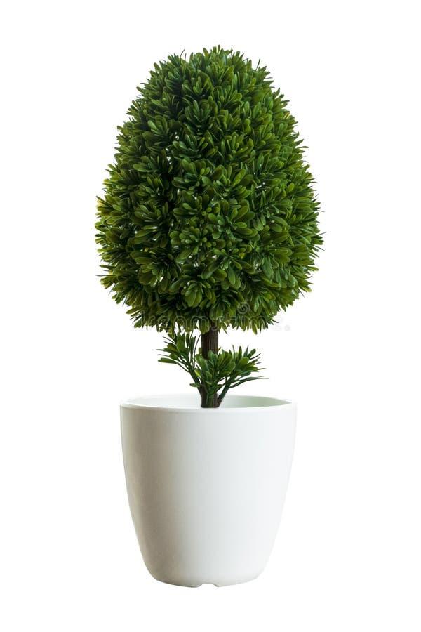 Piccolo albero artificiale in vasi bianchi su fondo bianco Immagine di concetto per interior design e la decorazione dell'ufficio immagini stock