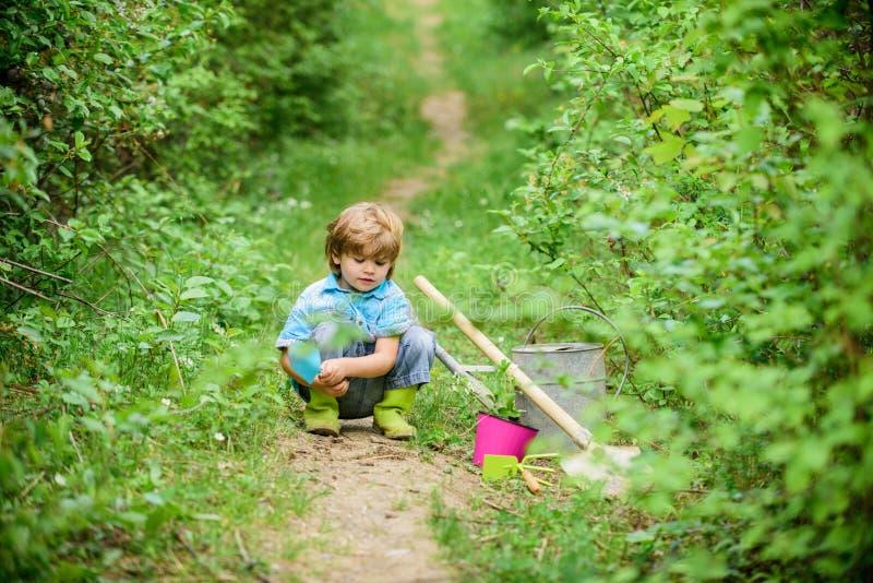 Piccolo assistente in giardino Piantatura dei fiori Piante crescenti Prenda la cura delle piante Ragazzo con la latta di innaffia immagini stock