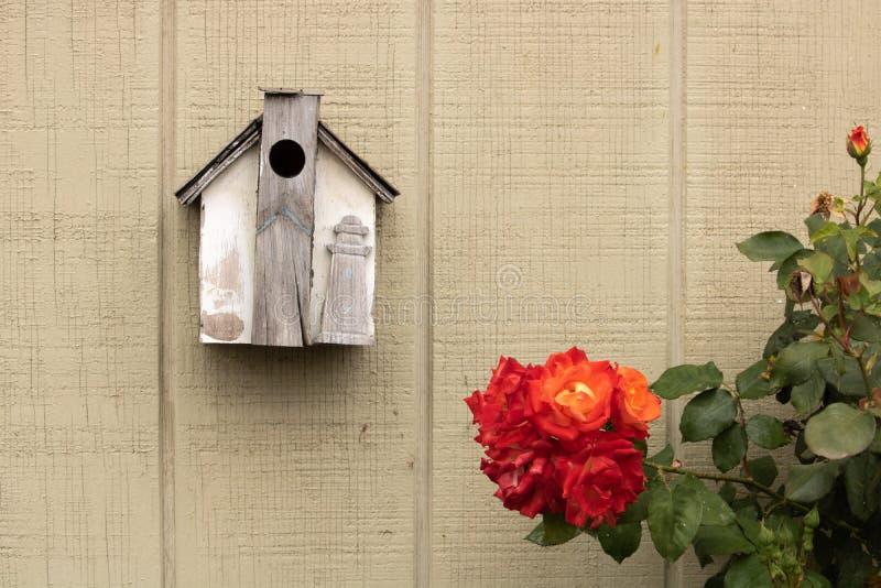 Piccolo aviario fatto a mano rustico decorato con un faro di legno che appende accanto a bello arancio, giallo, cespuglio di rosa fotografie stock