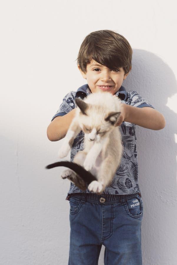Piccolo bambini e gatto del cucciolo dell'animale domestico nell'immagine di aria aperta fotografia stock