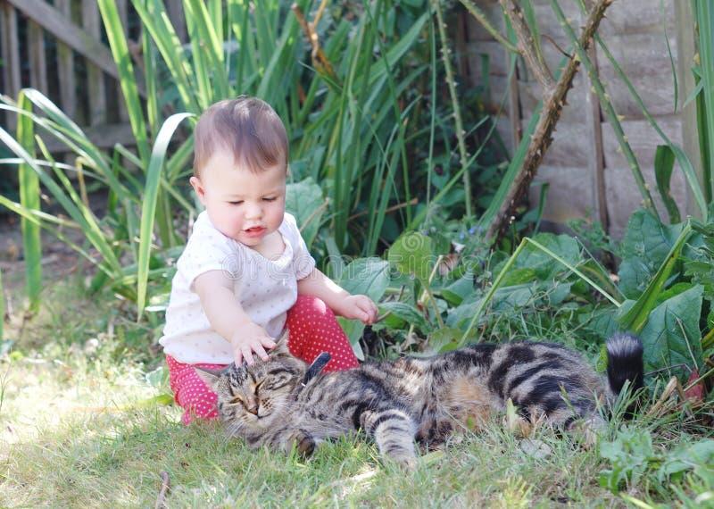 Piccolo bambino che gioca con il gatto nel giardino fotografie stock libere da diritti