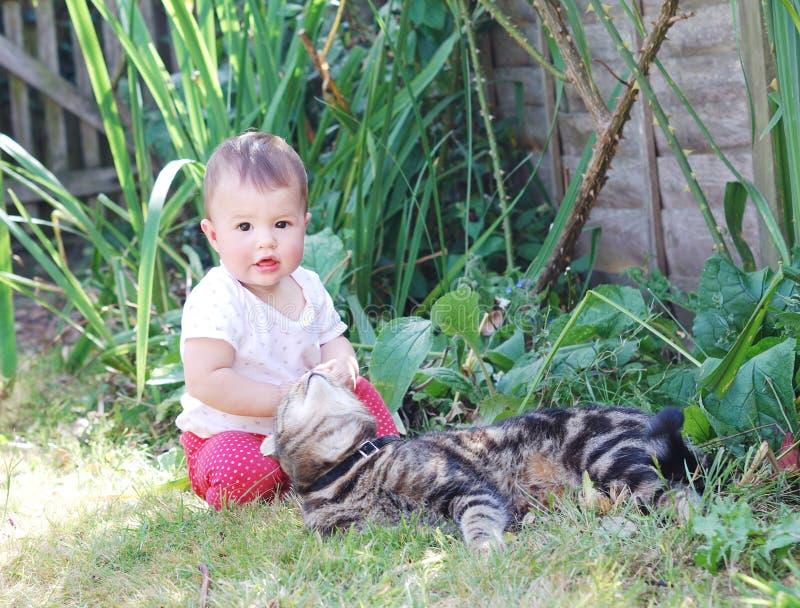 Piccolo bambino che gioca con il gatto nel giardino immagini stock