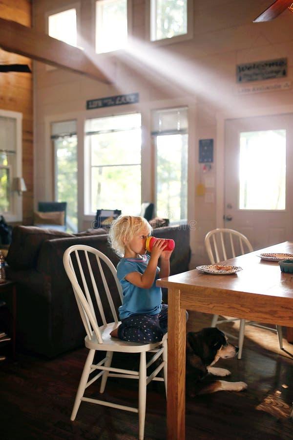 Piccolo bambino che si siede alla Tabella di prima colazione che beve la tazza di Sippy su Sunny Morning fotografie stock libere da diritti