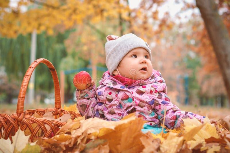 Piccolo bambino felice, neonata che gioca in autunno fotografia stock libera da diritti