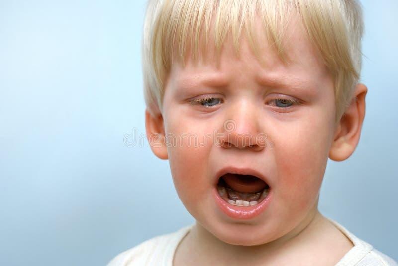 Piccolo bambino gridante immagine stock