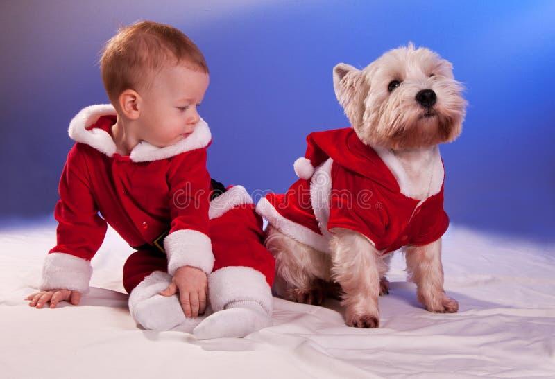 Piccolo bambino in Santa Claus ed in cane in costume di Santa Claus fotografia stock libera da diritti