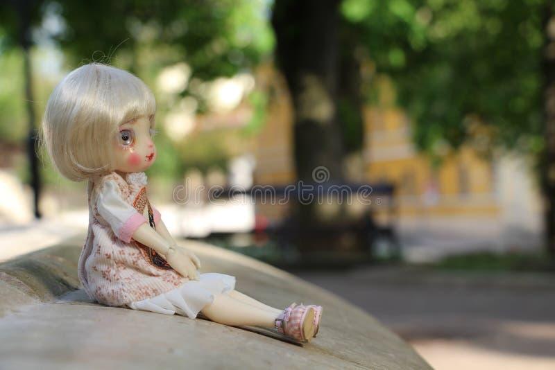 Piccolo bambole inoltre ha un cuore immagine stock libera da diritti