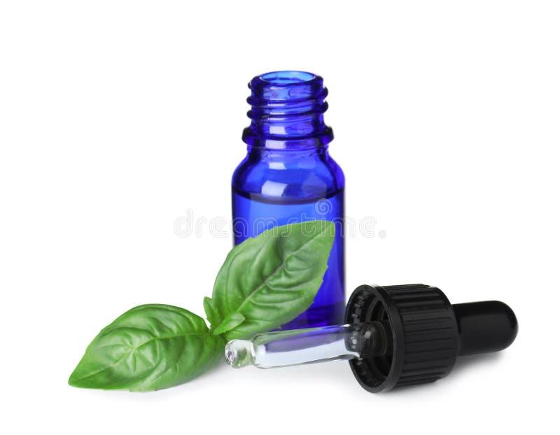 Piccolo bottiglia di olio essenziale con il contagoccia e di basilico su bianco immagine stock