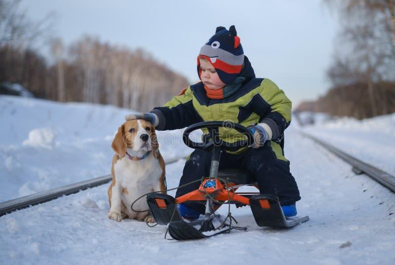Piccolo cane europeo di coccole del ragazzo che si siede su una slitta nell'inverno fotografia stock libera da diritti
