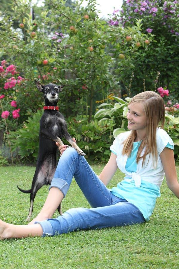 Piccolo cane sveglio che gioca con una ragazza fotografia stock libera da diritti
