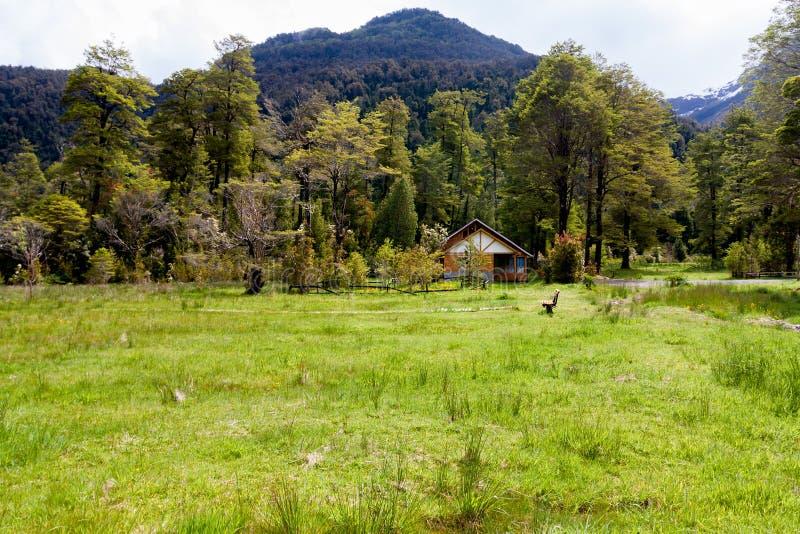 Piccolo chalet di legno e un banco sopra il pascolo verde e circondato dagli alberi fotografie stock libere da diritti